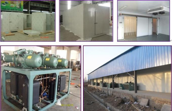 -18 ℃ Stainless Steel Walk In Cold Storage Room With Big Sliding Door