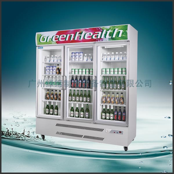 Stainless Steel Upright Commercial Display Freezer Tecumseh Compressor -25°C  3 Doors
