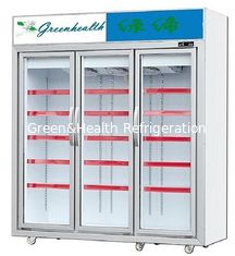 Upright Glass Door Freezer Frozen Display For Ice Cream Frozen Meat