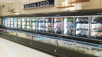 China -18 ~ -22℃ Combination Refrigerator Freezer With Bitzer Compressor Explosion Proof supplier