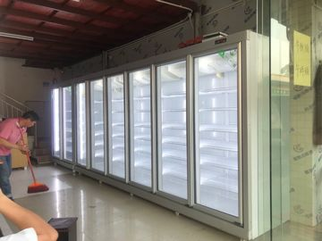 China Green & Health Chain Store Glass Door Freezer For Frozen Food With Fan Cooling supplier