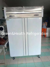 Fan Cooling Commercial Upright Freezer Vegetable Cold Chiller With Wheel