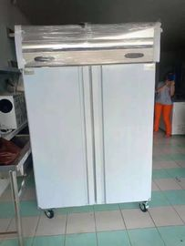 China Fan Cooling Commercial Upright Freezer Vegetable Cold Chiller With Wheel factory