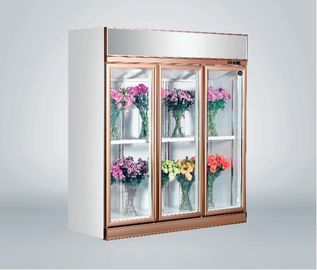 China Commercial Fresh Flower Glass Door Freezer Multi - Climate Fan Cooling factory