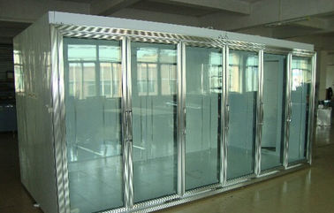 Back Side Loading Glass Door Freezer Large Capaciy Remote System Copeland Compressor