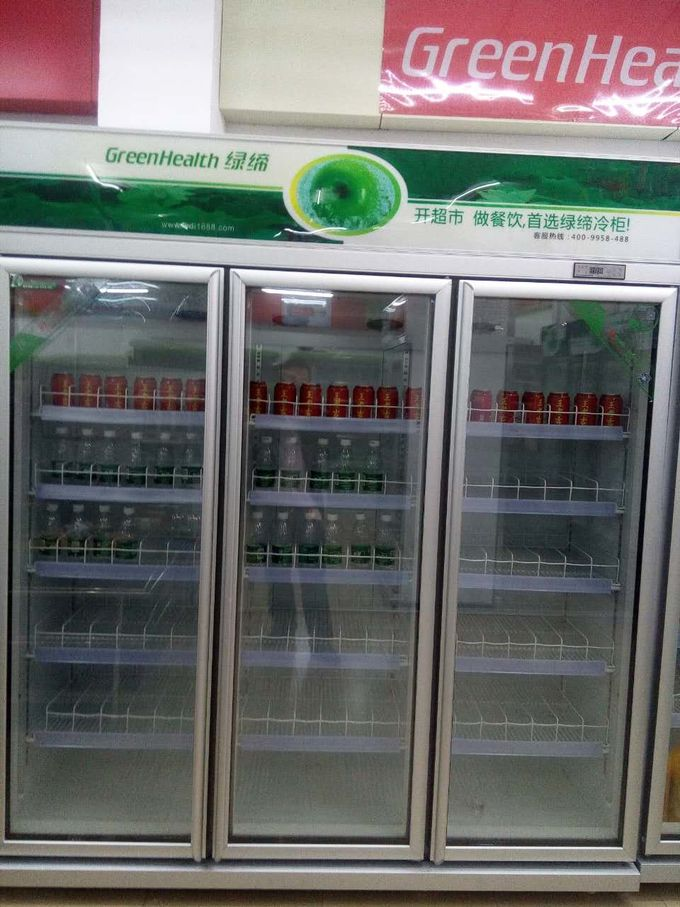 0 - 10℃  -18 ~ -22℃ Commercial Beverage Cooler With Thermostat Control System