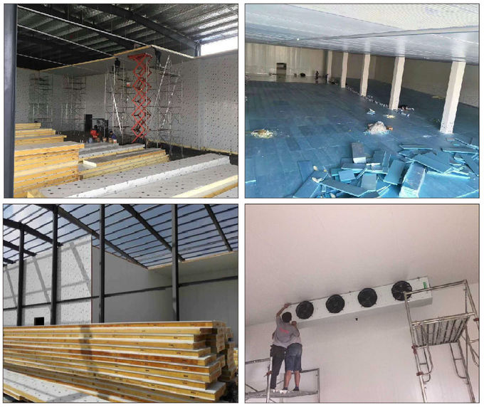 Meat / Chicken / Seafood Cold  Storage Room  With Customized Size